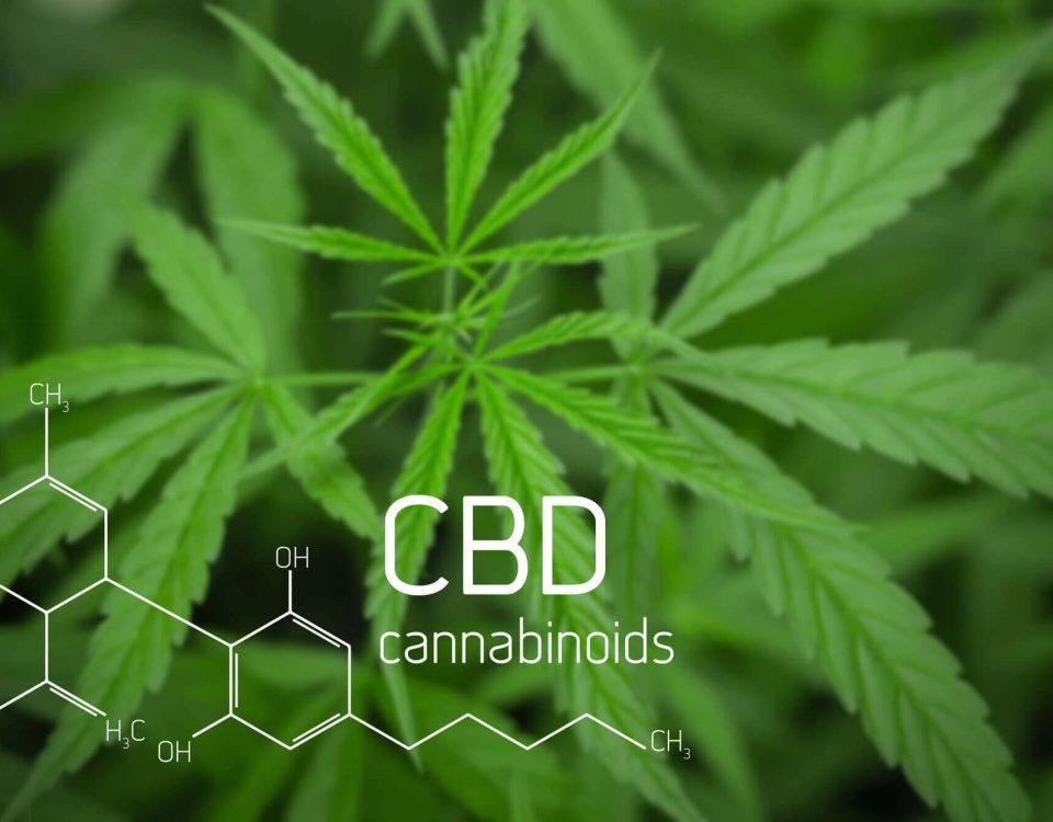 Everything About CBD