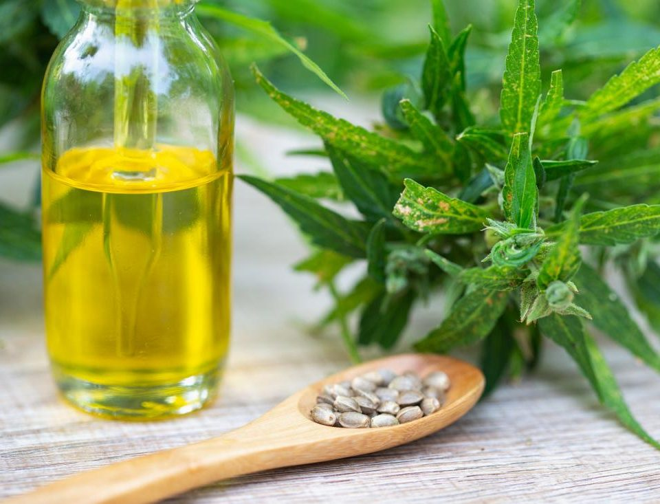 starting your own cbd company